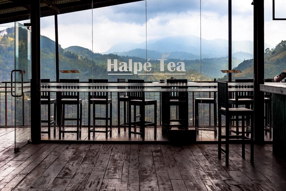 Tea Ella, Sri Lanka  #tea #plantation #Ella #SriLanka